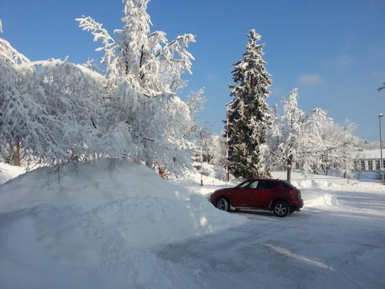 Winterjuke